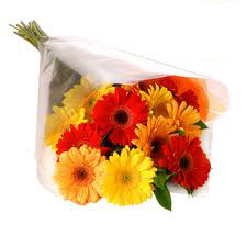 Yellow & Red Gerberas Bouquet
