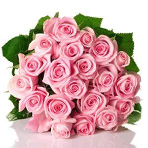 eautiful Pink Rush 24 pink roses bunch